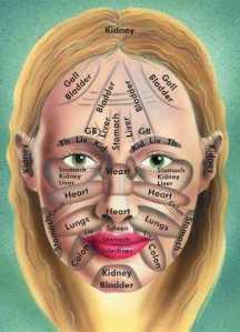 bagian wajah